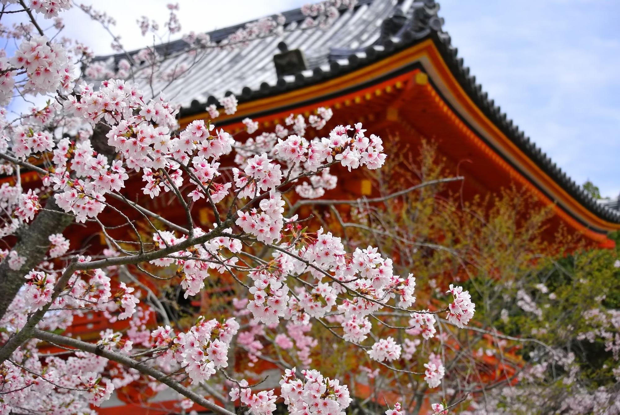 """日本人から見た """"日本のイメージ"""" 9割以上「日本が好き」 - 秩父新報"""